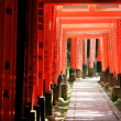 Inari torii gates - Kyoto - Japan - Stock Photo