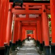 inari torii gates - kyoto - japan — Stock Photo