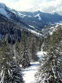 Sunny valley in ski mountain — Stock Photo