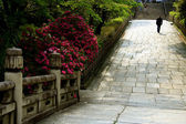 Japanse Garden Pathway — Stock Photo