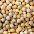 Peas grains — Stock Photo