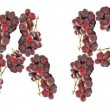 Grapes, alphabet — Stock Photo #6456634