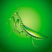 Green mantes — Stock Vector