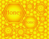 Honeycombs — Stock Vector