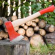 Red axe for firewood chopping, log and firewood — Stock Photo #6133799