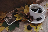 Coffee still-life — Stock Photo