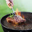 Barbecue — Stock Photo #6142892