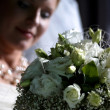 Beautiful bride — Stock Photo #6158994