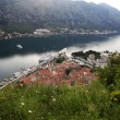 Old town of Kotor — Stock Photo #6164504