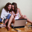 Stock Photo: Girls with a computer