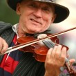 The man playing its violin - Lizenzfreies Foto