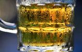 Taze soğuk bir bira — Stok fotoğraf