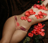 Woman covered with petals of roses — Stock Photo
