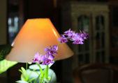 作業テーブルの上にランプ — ストック写真