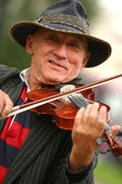 The violinist — Stock Photo