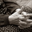 Hands of the elderly woman - Stok fotoğraf
