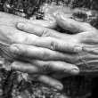 Hands — Stock Photo #6185624