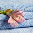 Blue towels with flower — Stock Photo #6195778