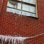 Frozen window — Stock Photo #6203733