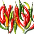 Hot chilli peppers - Stock Photo