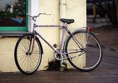 велосипедов на улице — Стоковое фото