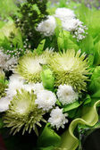 Bouquet from chrysanthemums — Stock Photo
