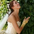 Beautiful bride — Stock Photo #6210008
