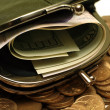 Purse with money — Stock Photo