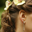 Ear rings — Stock Photo #6215703
