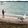 Fisherman and the seagull — Stock Photo
