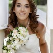 Beautiful bride — Stock Photo #6231681