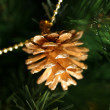 Gold pine cones — Stock Photo #6234329