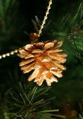 Gold pine cones — Stock Photo
