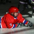 Постер, плакат: Young hockey players