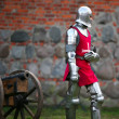 knight — Stock Photo #6246488