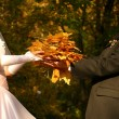 Royalty-Free Stock Photo: Autumn wedding