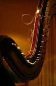 Detail of harp — Stock Photo