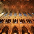 Notre dame de Paris — Stock Photo #6268594