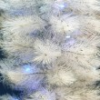 Stock Photo: Fur-tree with fires