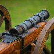 Medieval gun — Stock Photo