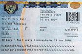 Visa — Stock Photo