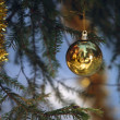Stock Photo: Christmas tree with ball