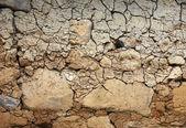 Dry land background — Stock Photo