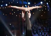 Letecké akrobaty — Stock fotografie