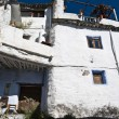 House facade alpujarra — Stock Photo