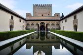 Yard myrtles, the alhambra — Stock Photo