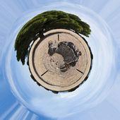 Albero e sepoltura megalitica fotosfera — Foto Stock
