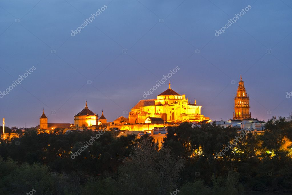 Overview of the Cordoba mosque at night — Stock Photo #6166471