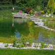 Beautiful classical garden pond. — Stock Photo #6490418