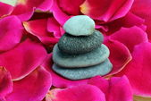 Zen stones on rose petals — Stock Photo